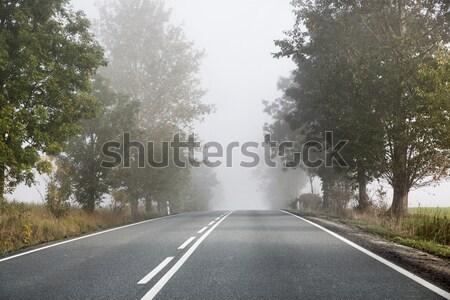 Lege weg achter klein platteland voorjaar Stockfoto © konradbak