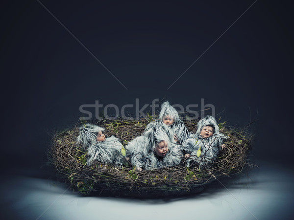 Conceptual photo of a nestling child Stock photo © konradbak
