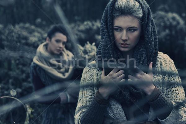 Iki güzel bayan sonbahar manzara kadın Stok fotoğraf © konradbak