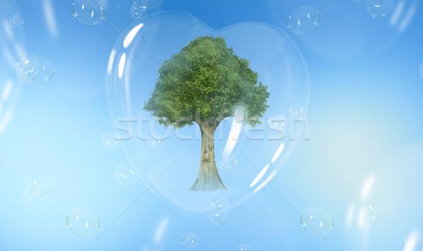 Zöld fa szív alakú szappanbuborék fa fény Stock fotó © konradbak