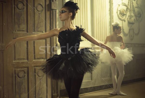 фотография два молодые девушки Dance Сток-фото © konradbak