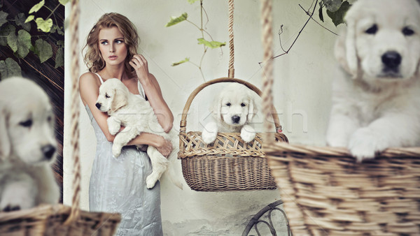 Pretty girl with puppies Stock photo © konradbak