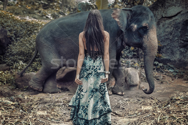 Stock photo: Brunette woman staring at the wild elephant