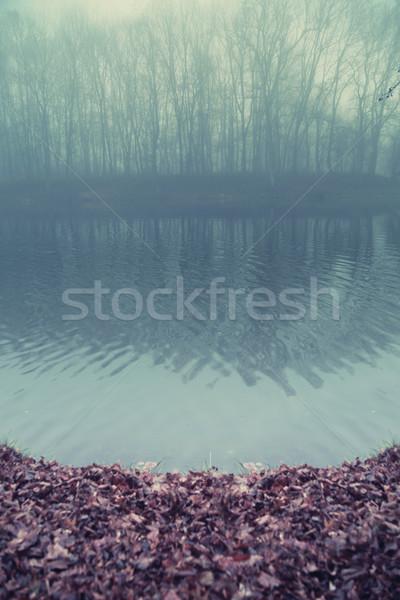 Foto stock: Lago · agua · corazón · forestales · edad · naturaleza