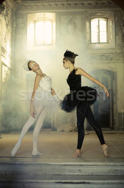 Magnifique duel deux ballet fille danse Photo stock © konradbak