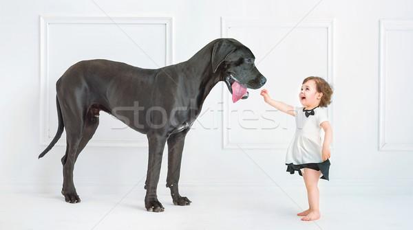 Cute bambina giocare enorme cane nero Foto d'archivio © konradbak