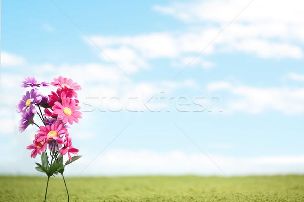 Stockfoto: Blauw · bloem · textuur · abstract · natuur