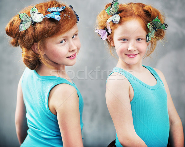 Due zenzero farfalle Foto d'archivio © konradbak