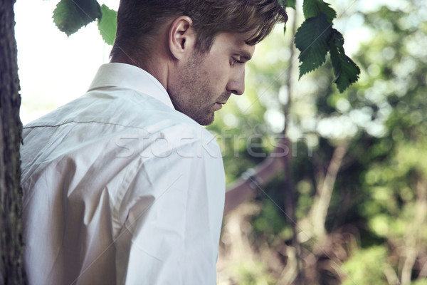 Bel homme jardin arbre visage portrait tête Photo stock © konradbak
