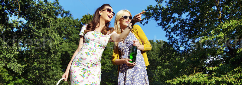 Foto d'archivio: Due · ridere · donne · giro · turistico · parco · signore
