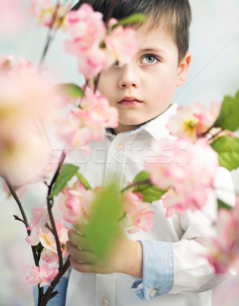 Little elegant boy holding a flower Stock photo © konradbak