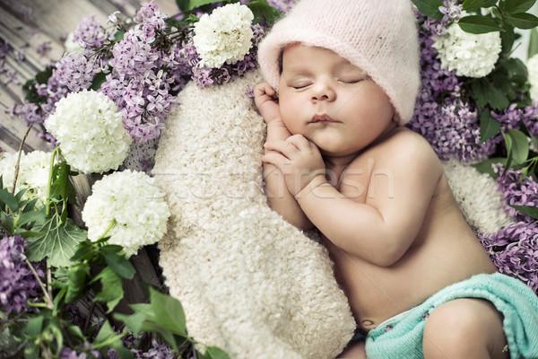 cute boy sleeping among the flowers Stock photo © konradbak