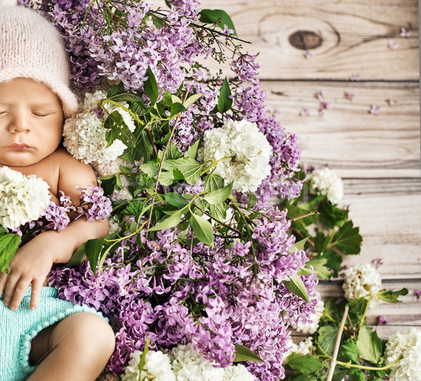 Stock photo: Cute child sleeping on the flowers