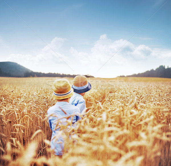 Stock photo: Two brothers among corn fields