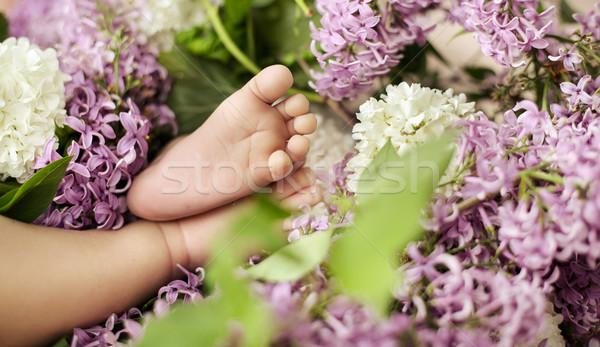 Little feet among colorful flowers Stock photo © konradbak