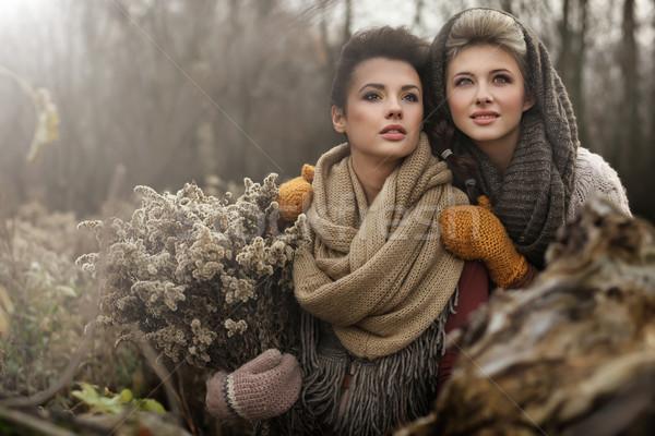 Arte foto dois belo mulheres mulher Foto stock © konradbak