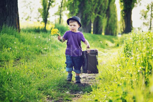 Pequeno cavalheiro enorme mala grande grama Foto stock © konradbak