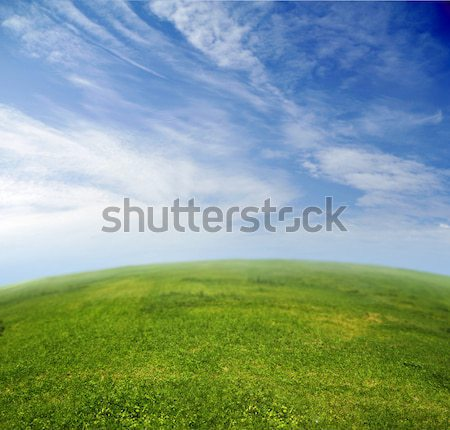 Green grass, blue sky in fish-eye lens  Stock photo © konradbak