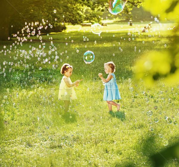 Zeepbellen zomer weide vers Stockfoto © konradbak