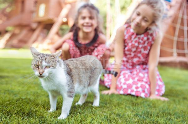 Kettő derűs lányok néz higgadt macska Stock fotó © konradbak