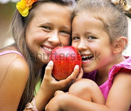 Gioioso cute ragazzi condivisione mela bambini Foto d'archivio © konradbak