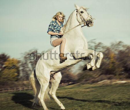 Stock fotó: Portré · szőke · nő · lovaglás · ló · fenséges