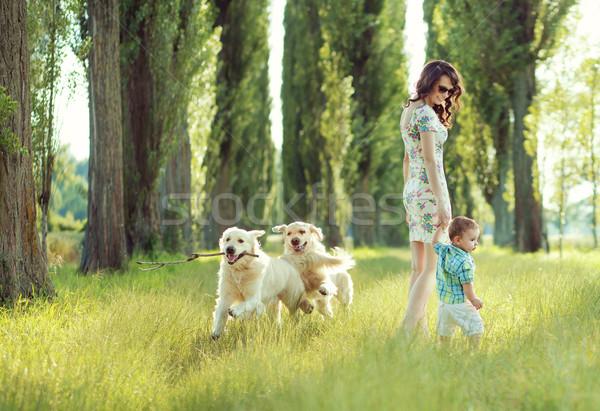 Gyermek játszik anya kutyák boldog nő Stock fotó © konradbak