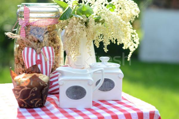Stock fotó: Egészséges · reggeli · friss · kert · nyár · tavasz