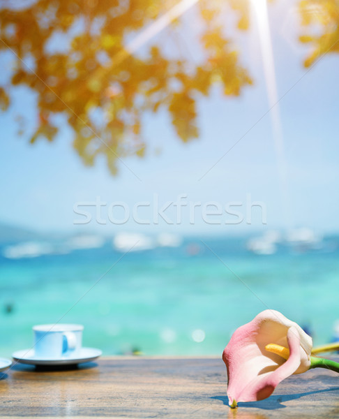 Beautiful view of a summer bay in a tropical area Stock photo © konradbak