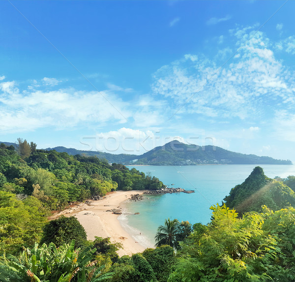 Asian krajobraz Rainforest ocean ogród dłoni Zdjęcia stock © konradbak