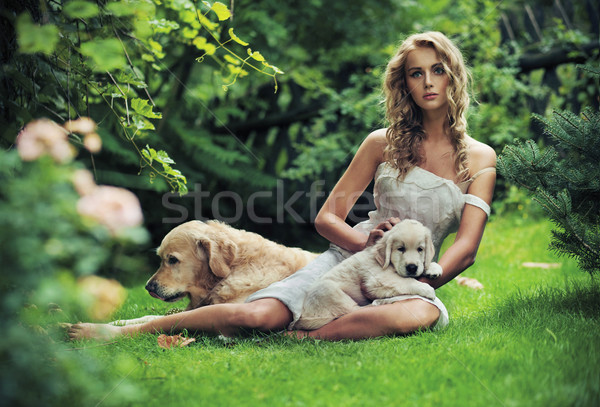 Cute woman with dogs in beauty nature scenery Stock photo © konradbak