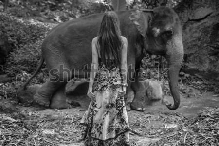 Black&white portrait of a woman hugging an elephant Stock photo © konradbak
