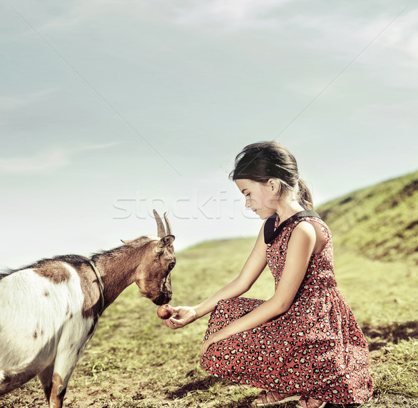 Calm, cheerful girl feeding a goat Stock photo © konradbak