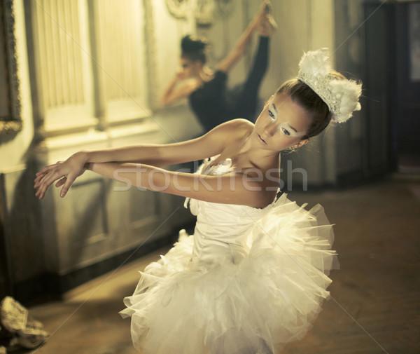 Witte ballet zwaan zwarte een meisje Stockfoto © konradbak