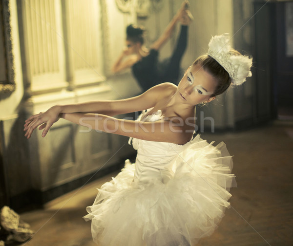 Blanche ballet cygne noir une fille Photo stock © konradbak