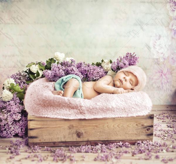 Stock fotó: Alszik · kisgyerek · virágok · pléd · lila · baba