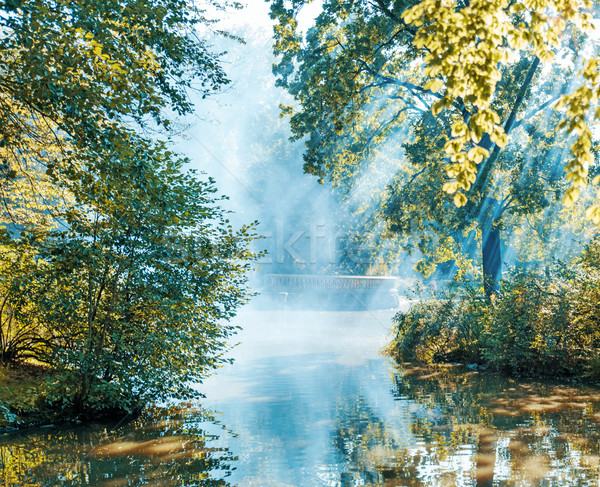Summer morning on the edge of a lake Stock photo © konradbak