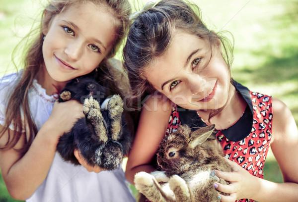Twee vrolijk meisjes pluizig konijnen Stockfoto © konradbak