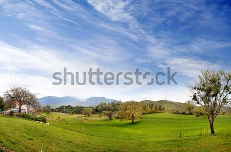 Paysage italien village ciel printemps herbe Photo stock © konradbak