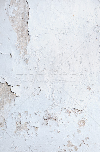 Stained, ragged wall - vintage building Stock photo © konradbak