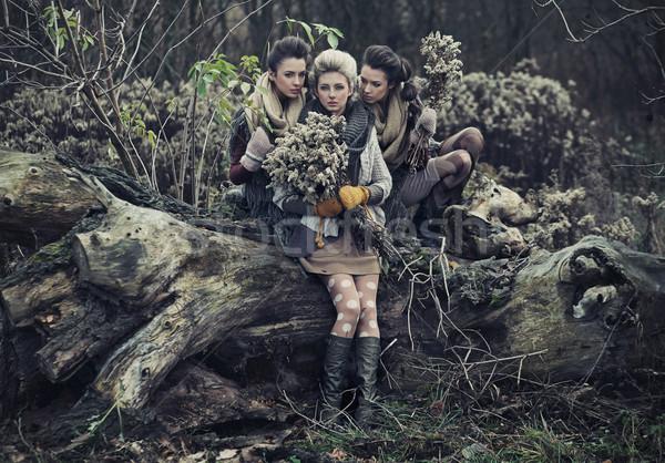 Three beautiful ladies Stock photo © konradbak