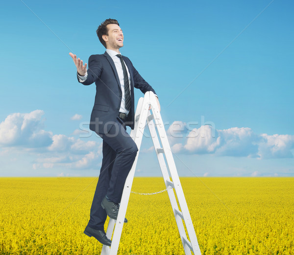 Stock photo: Smart businessman standing on the ladder