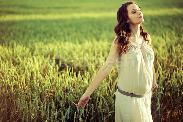 Mulher grávida caminhada milho campo grávida senhora Foto stock © konradbak