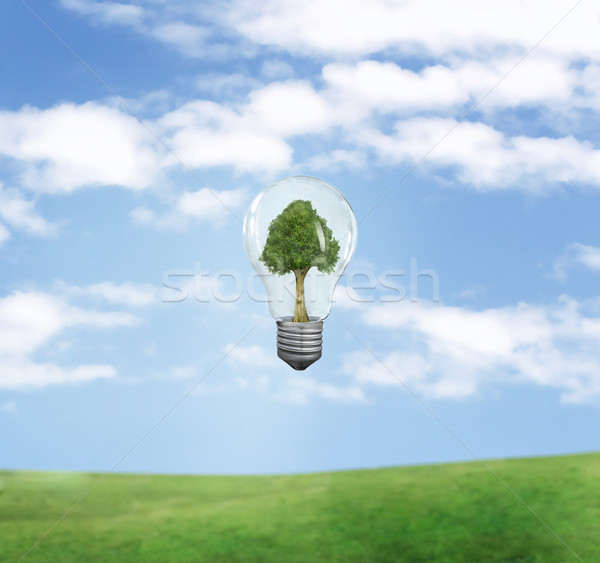 green energy symbol over blue sky  Stock photo © konradbak