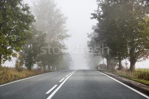 Tembel sabah boş yol uzun bahar Stok fotoğraf © konradbak