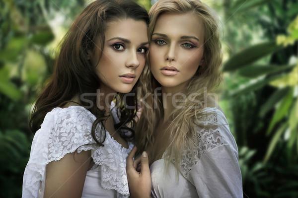 Dois jovem mulher menina feliz floresta Foto stock © konradbak