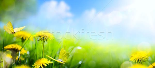 Pascua flor de primavera frescos flor amarillo mariposa Foto stock © Konstanttin