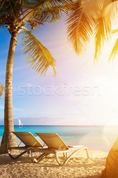 Kunst tropische zee strand vakantie palmen Stockfoto © Konstanttin