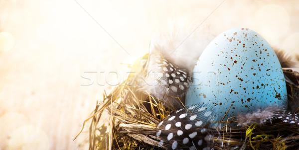 искусства Христос воскрес день пасхальное яйцо птица Перу Сток-фото © Konstanttin