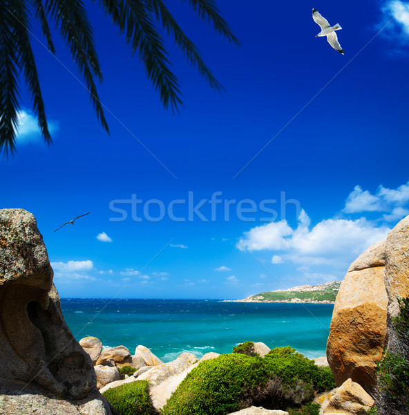 summer sea Stock photo © Konstanttin